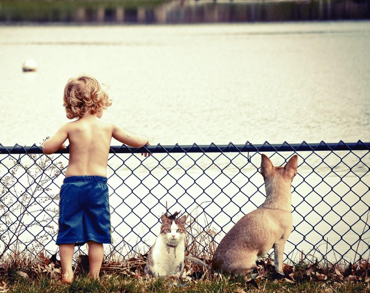 Dogoterapia - czy pies  to najlepszy przyjaciel małego dziecka?